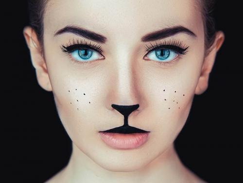 Грим кошки на лице для детей. Как нарисовать мордочку кошки на своем лице: идеи и техника
