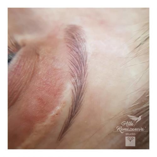 Техника растушевка брови. Какую технику татуажа бровей выбрать - волосковую или растушевку?