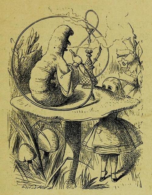 Алиса в стране чудес книга. Что такое «Алиса в Стране чудес»