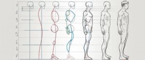 Анатомия лица для рисования. Пластическая анатомия для начинающих