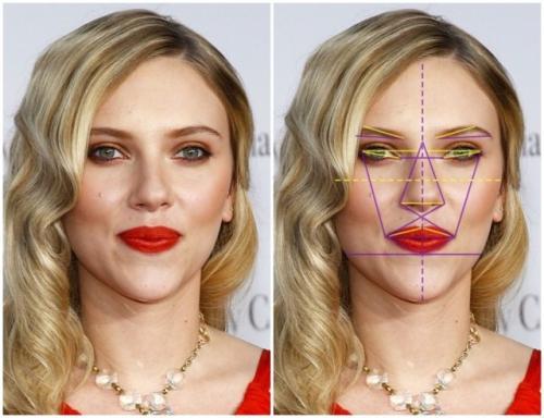 Золотое сечение лицо человека. Золотое сечение знаменитостей: специалисты выбрали 10 женщин с идеальными чертами лица