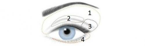 Осенний макияж для голубых глаз. Макияж для голубых глаз пошагово