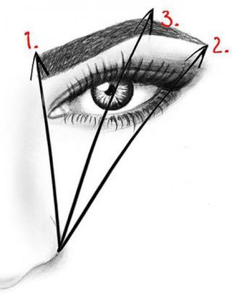 Интересное про брови. Сегодня, мы рассмотрим самые популярные мифы о коррекции бровей.