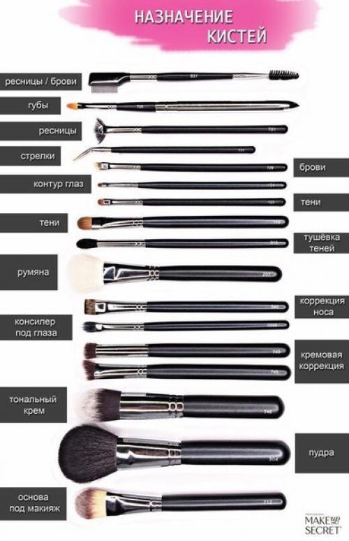 Кисточки для макияжа инструкция какие для чего