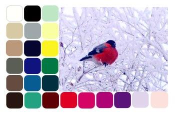 Цветотип Зима. Макияж для южной зим