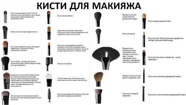 Для чего какая кисточка в макияже