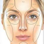 Наше лицо условно делится на зоны контура и блика.