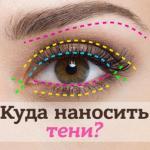Как правильно наносить тени на глаза пошагово. Как правильно наносить тени на глаза: пошаговая инструкция.
